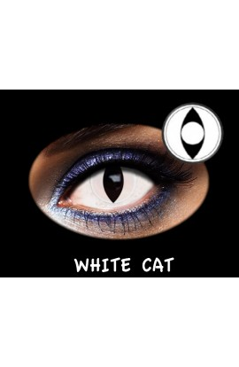 LC TRIMESTRAL WHITE CAT