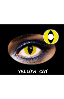 LC TRIMESTRAL YELLOW CAT