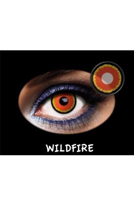 LC TRIMESTRAL WILD FIRE